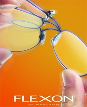 Flexon Glasses